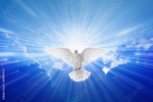Holy Spirit came down like dove