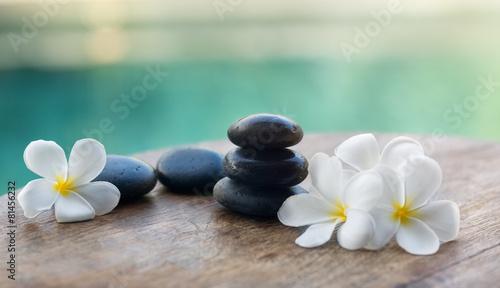 White frangipani with black stones