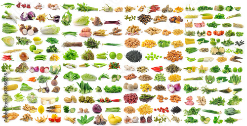 set of vegetable grains and herbs on white background