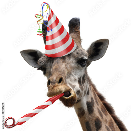 Funny giraffe party animal making a silly face
