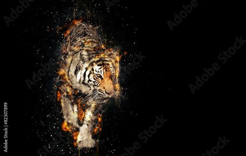 Fototapeta premium Płonący tygrys na czarnym tle