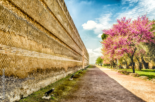 Obraz na płótnie Historical Walls inside Villa Adriana (Hadrian's Villa), Tivoli,