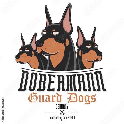 Fotografia dobermann hund wachhund