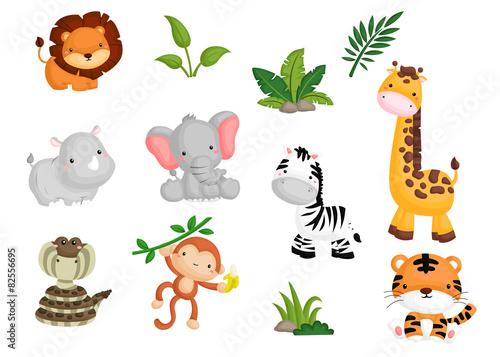 Jungle animal Vector set