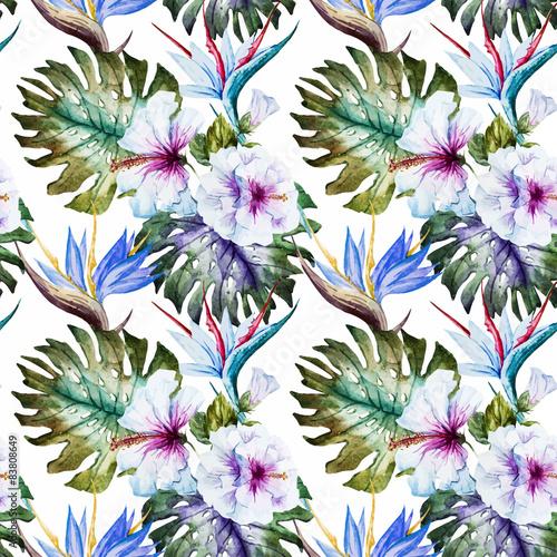 Fototapeta Wzory hibiskusa akwarela na białym tle na zamówienie