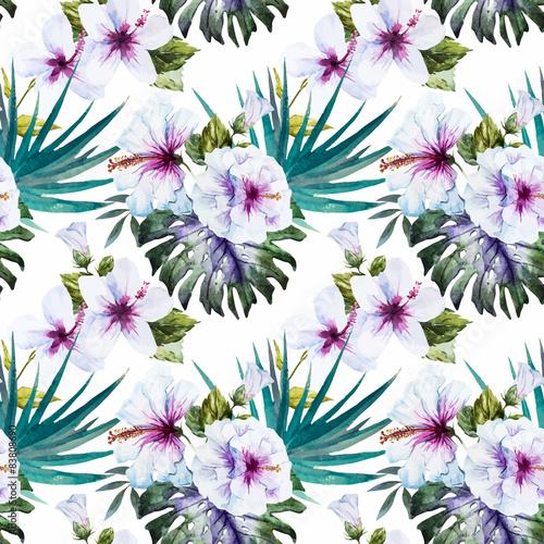 Fototapeta Wzory hibiskusa akwarela na białym tle na wymiar