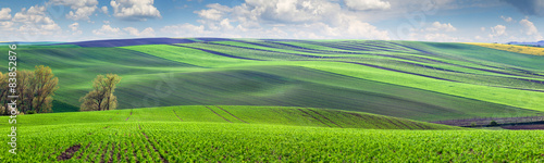 Wonderful panoramic view of fields in beautiful colorful valley #83852876