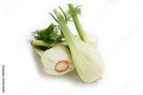 finocchi_ verdura su sfondo bianco