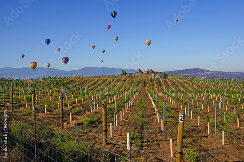 Balloon and Wine Festival in Temecula, California