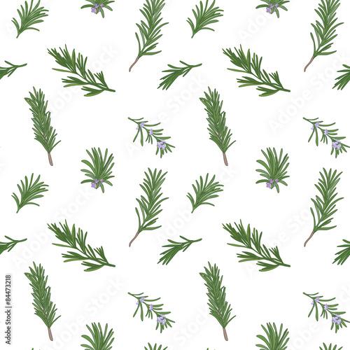 Fototapeta Rosemary seamless pattern