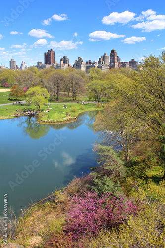 Carta da parati New York City / Central Park