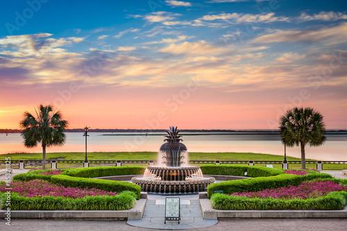 Fototapeta premium Waterfront Park Charleston