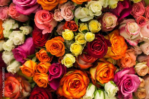 Fotografia, Obraz beautiful bouquet of multicolored roses