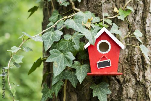 Leinwand Poster Vogelhäuschen im Garten