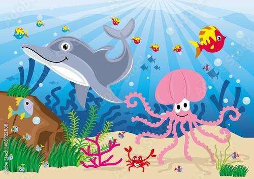 ryby,morze,podwodny świat,pod wodą,woda,ryba,rybki,kolorowe,delfin,rak,ośmiornica
