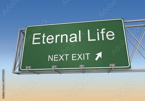 Obraz na plátně eternal life sign
