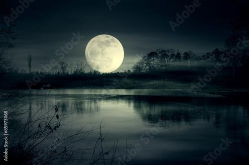 Canvas Print Full moon rise