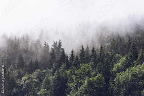 Zalesiony stok góry w niskiej chmury leżącej