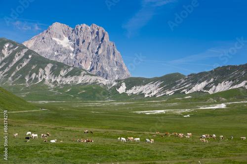 Fotografia, Obraz Abruzzo, Gran Sasso