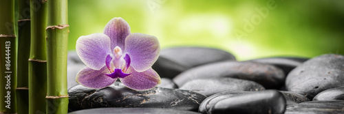 spa concept with zen stones basalt stone bamboo and orchid #86444413