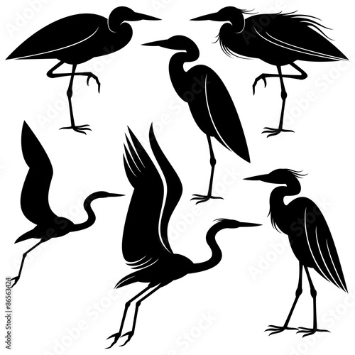 Tablou Canvas Heron