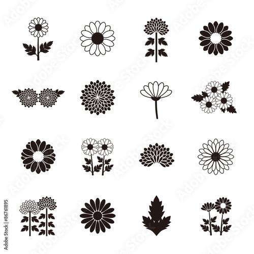 Fotomural Chrysanthemum Daisy Marguerite icon set