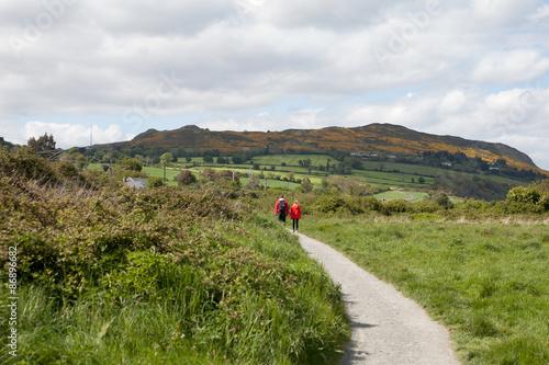 Fototapeta Cliff walk from Greystones to Bray Head