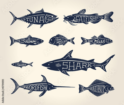 Canvas Print Vintage illustration of fish with names