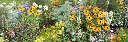 Plate-bande de fleurs variées  #87353640