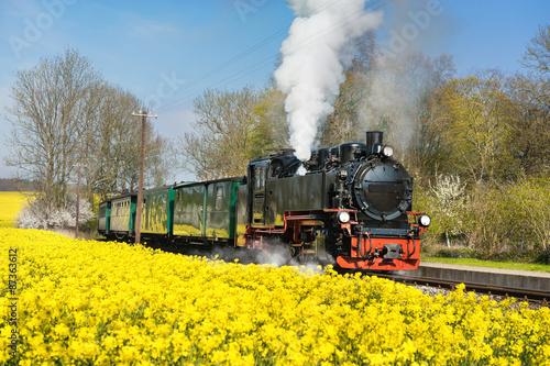 Historical steam train on island Ruegen in spring Fototapeta