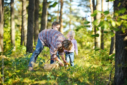 Obraz na płótnie Grandmother and her girls picking mushrooms