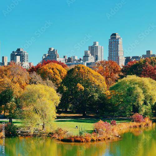 Stampa su Tela Central Park Autumn