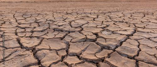 Canvas Print drought land