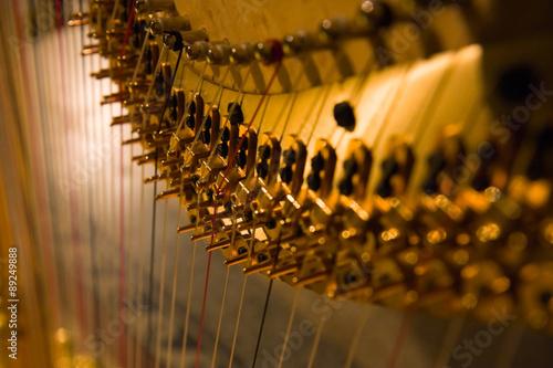 Canvas Print Harp detail