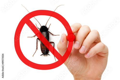 Prohibition Sign Cockroach Pest Control Concept