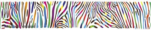 Fotografia Background with multicolored Zebra skin