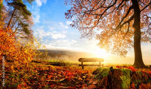 Slika na platnu Zauberhafte Herbstszene