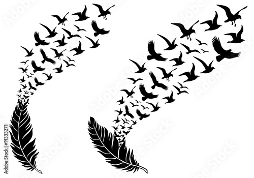 Fototapeta premium pióra z latającymi ptakami, wektor