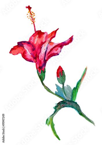 Valokuva Handmade hibiscus fuchsia red color