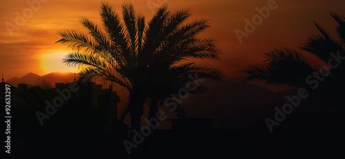Египет, Синайский полуостров. Рассвет в пустыне #92633297