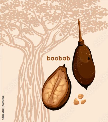 Canvastavla Fruit of baobab tree and seeds.