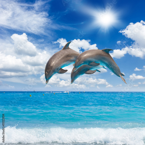 three  jumping dolphins