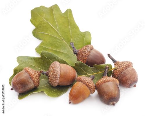 Acorns and leaves.
