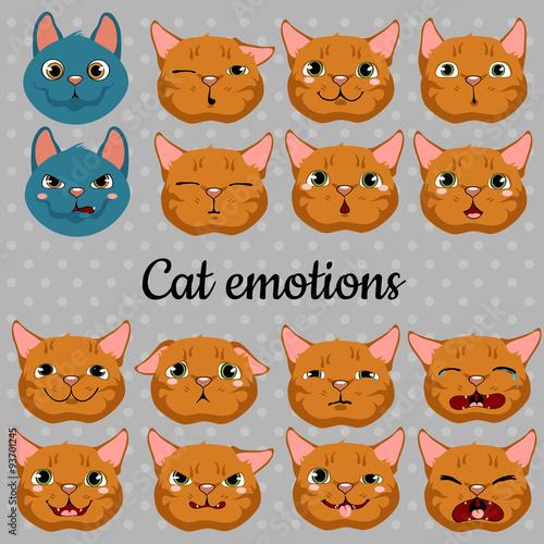 Obraz na plátně Set of faces of cats on a gray background