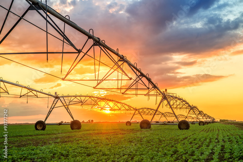 Fotografia Automated farming irrigation system in sunset