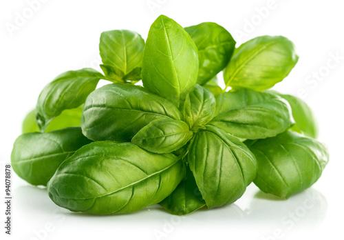 Cuadros en Lienzo Fresh green leaf basil. Isolated on white background