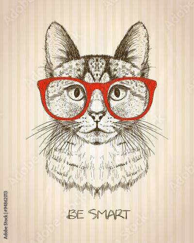 Naklejki na meble z kotem hipsterem w czerwonych okularach