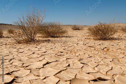 Slika na platnu Desertification
