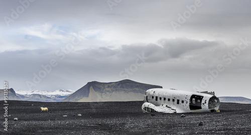Fotografie, Obraz Flugzeugwrack auf Island
