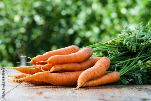 Foto fresh carrots bunch